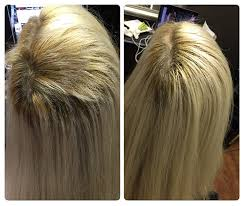 Dream Catcher Hair Extensions Cost Kim Lake Hair Seattle WA Hair Extensions Custom Blends Hair 77
