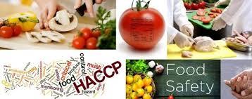 Znalezione obrazy dla zapytania food safety