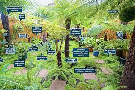 Small Picture Patrick de Nangle transforms London back garden into a tropical
