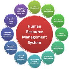 essays on human resources edu essay