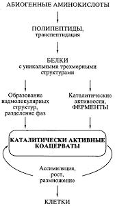 Гипотеза А И Опарина о происхождении жизни на Земле Реферат Схематическое представление пути происхождения жизни согласно белково коацерватной теории А И Опарина