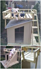 easy diy dog house with roof top deck step by step tutorial
