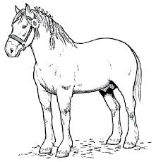 Free Horse Coloring Pages Horse Coloring Pages Free Coloring Pages