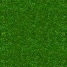 Grass Texture Wallpapers ID: LXR721721 - HD Wallpapers