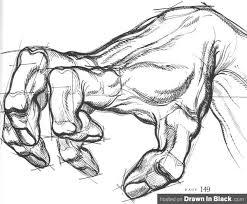 burne hogarth hand in dynamic anatomy