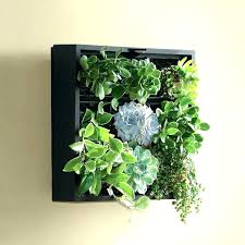 wall mounted planters wall planters indoor wall planters indoor m wall hanging ceramic planters for indoor