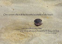 sea shell quotes pretty seashell quote by jamart photography sea shells
