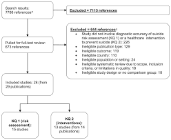 Figure 2 Literature Flow Chart Systematic Review Of
