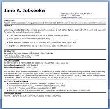 Veterinary Receptionist Resume Pleasing 10 Sample Vet Tech Resume