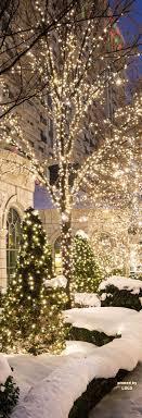 Outside Christmas Lights Best 20 Christmas Lights Ideas On Pinterest Holiday Time Lights
