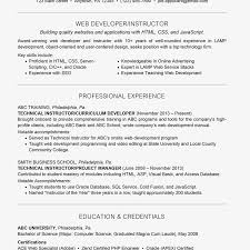 Web Developer Resume With Summary Statement Example
