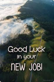 New Job Quotes Stunning Top 48 Good Luck For New Job Quotes And New Job Wishes