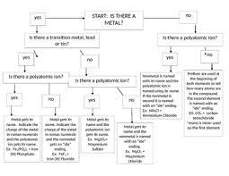 Nomenclature Flow Chart Editable
