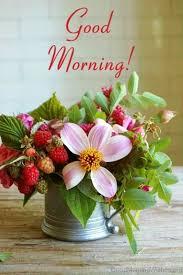 40 Fresh Good Morning Wishes Mesmerizing Goodmorning Unique Images