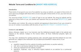 Website Terms And Conditions Template Beauteous Website Terms And Conditions Template Bizorb