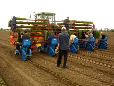 10 to 60 cm capacity: Farm Equipment Mechanical And Automatic Vegetable Transplanters Ferrari Equipment Brands Equipment Serving Any Location In Bc Canada And The Us