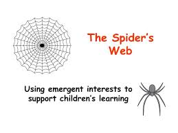 Free Spider Identification Chart Ppt The Spiders Web Powerpoint Presentation Free