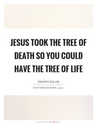 Tree Of Life Quotes Delectable Jesus Took The Tree Of Death So You Could Have The Tree Of Life