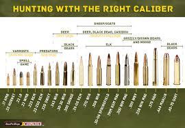 Big Game Calibers Cartridge Chart Centerfire Pistol Bullet