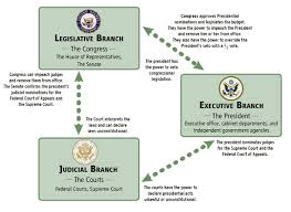 Executive Branch Flow Chart Government Branches Handbook To America