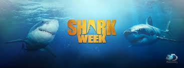 Shark Week schedule 2021: Channel ...