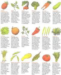 easy vegetable garden easy vegetables to grow easy vegetable garden layout