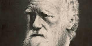 Charles Darwin - Short Biography HD! - YouTube