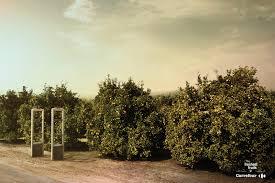 print ad leo burnett. Carrefour Print Ad - Oranges Leo Burnett :