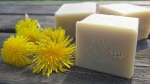 ผลการค้นหารูปภาพสำหรับ dandelion soap