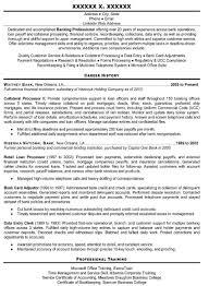 professional resume writer minneapolis resume builder professional resume writer minneapolis professional resume writing service the resume clinic professional resume writers template