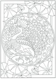 Small Picture Peacock Coloring Pages For Adults Coloring Pages