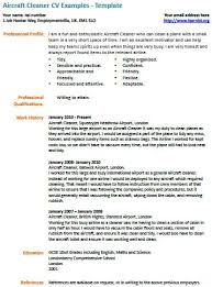 Cv Cleaner Aircraft Cleaner Cv Example Learnist Org