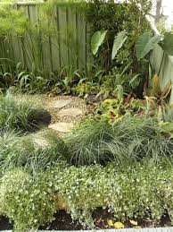 Small Picture 56 best Cool Climate Tropical Garden images on Pinterest Garden