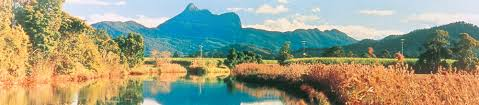 Image result for tweed caldera