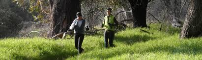 Ultramarathon Training Schedule Generator Santa Clarita Runners
