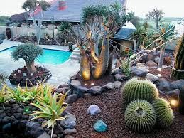 Small Picture Cactus Garden Design i Succulent Cactus Garden Design YouTube