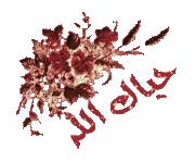 فلسطين تتعرض لمنخفضين جويين الأسبوع الجاري Images?q=tbn:ANd9GcTaWNppkEAdXrLbwu08JA9j-du1WqkUC_5aJBANDqhe6hfVzYcmeA