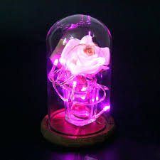 glass bell dome glass display dome with wooden base flower vases cloche bell jar glass domes glass bell dome