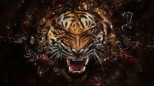 Tiger wallpaper, Cool wallpapers ...