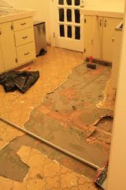 Linoleum Flooring For Kitchen 17 Best Ideas About Linoleum Kitchen Floors On Pinterest Paint