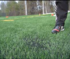 Toxic Turf Movement Grows Against Synthetic Turf Ecology Global