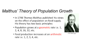 population theorists ppt video online malthus theory of population growth