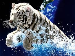 Desktop year of the tiger images ...