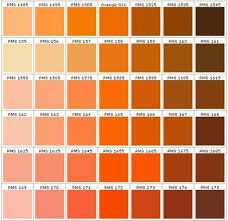 Orange Pantone Color Chart Pantone Colors In Orange Pantone Colour Palettes Pantone