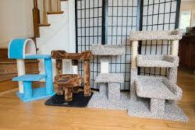 the best cat trees for apartments