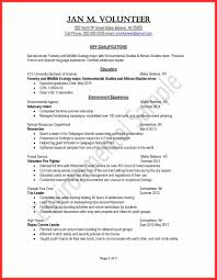 Youth Resume Sample Good Resume Format