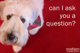friday features can i ask you a question rosyscription