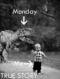 Monday Quotes Funny Extraordinary 48 Inspirational Monday Quotes To Start Happy
