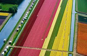 المناظر الطبيعية في هولندا Images?q=tbn:ANd9GcTa_S0fEBR8PVvyb6rMWreBde9jyhLkOllQpNCWHRhgKzGkTFAnBA