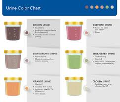Kidney Failure Urine Color Chart Should I Be Worried About My Urine Color Unitypoint Health
